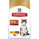 Hills Science Diet Feline Hairball Control Adult Cat Foods